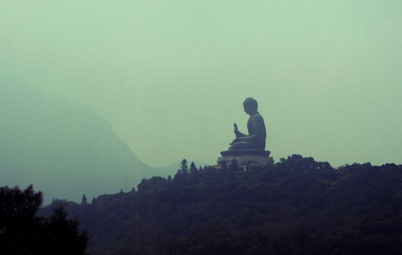 buddhist teachers climate crisis
